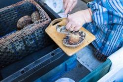 Awabi sashimi, abalone, Morning market, Yobuko Port, Saga, Japan
