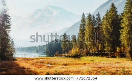 Awesome alpine highlands in sunny day. Scenic image of fairy-tale Landscape in sunlit with Majestic Rock Mountain on background. Wild area. Hintersee lake. Germany.  Bavaria, Alps. Creative image #791692354