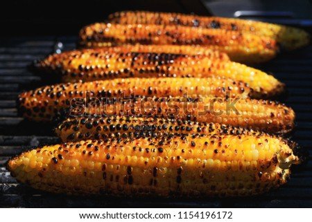 Awesome American grilled corn. Grilled vegetables is significant type from street food culture of many peoples. Roasted corn with black and orange grains, in close up picture.