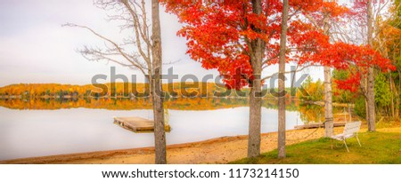 Awesome fall panorama.The stark vibrant red of the almost bare maple tree forms an excellent foreground for this lakeside pic,offering a perfect reflection of the gorgeous fall foliage in the distance