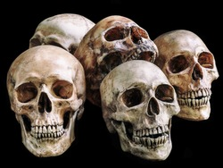 Awesome pile of skull and bone on black background, Still Life style, selective focus, Adjustment color for background