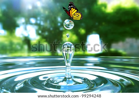 Awesome water drop moment in park with beautiful butterfly