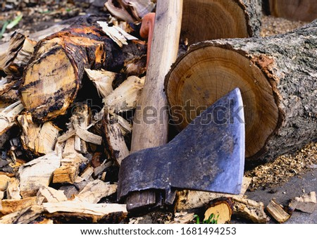 Ax close up. Ax and felled trees. Slivers of trees. Rusty ax. Dark background Stock photo ©