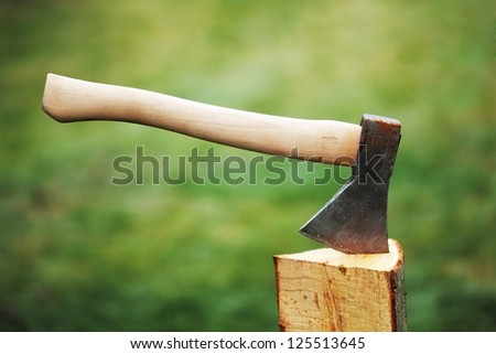 Ax in a log on the background of green grass