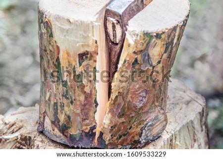 ax in a split stump