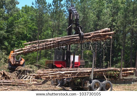 Ax men at work. Logging in Tennessee with forest background.