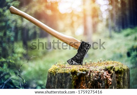 Axe cut in the chopping block in forest  background. Lumber jacks wood cutting work tool. Foto stock ©