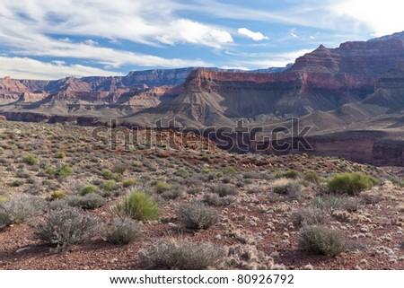 AZ-Grand Canyon-Clear Creek Trail