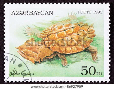 AZERBAIJAN - CIRCA 1995:  A stamp printed in Azerbaijan shows a Mata Mata turtle, Chelus fimbriatus.  The turtle's head is shaped like dead leaves allowing it to hide easily, circa 1995.
