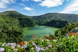 Azores: Flowers at Lagoa Funda das Lajes on Flores island, the azores, Portugal.