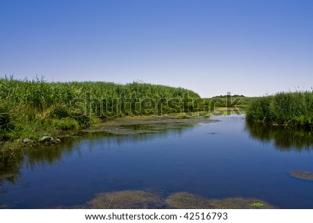 Azraq Oasis - stock photo