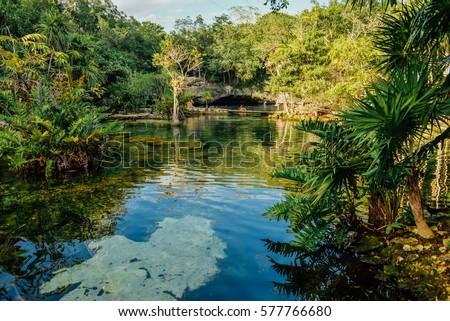 Shutterstock Azul cenote, Akumal, Quintana Roo, Mexico