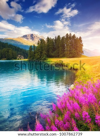 Azure pond Champfer is a unique place. Location Silvaplana village, Swiss alps, Maloja, Europe. Wonderful image of wallpaper. Scenic image of environment, hiking concept. Explore the beauty of earth.