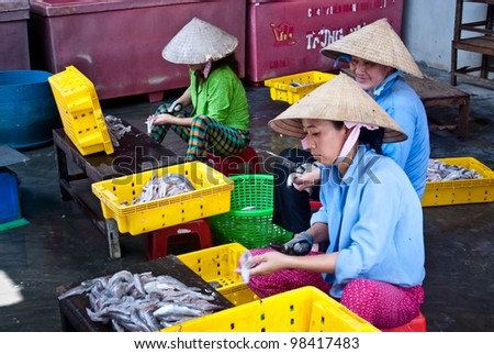 BA TRI, VIETNAM - AUGUST 25: three unidentified women working in a fishery in Ben Tre province on august 25, 2010. Depending on the weather this fishery may harvest from 500kg to 1ton of fish everyday