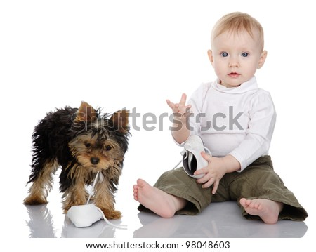 baby and puppy that got a hold of the kids shoes. isolated on white background