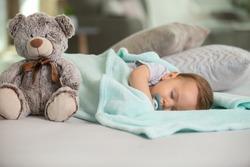 baby asleep with a dummy and a teddy-bear