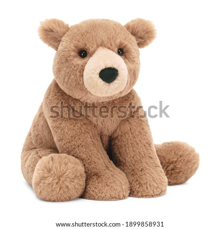 Baby Bear Plush Toy Isolated on White. Seated Brown Toddler Soft Plushies Seated Toy Bear Sitting on Floor Side Front View. 34 Inch Stuffed Teddy Bear. Fabric Stuffed Toys or Stuffies. Cuddle Buddy Stock photo ©