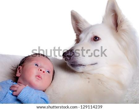Baby boy and his friend, white swiss shepherd dog