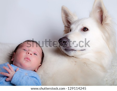 Baby boy and his friend, white swiss shepherd dog