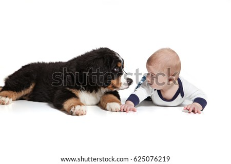 baby boy and puppy bernese...