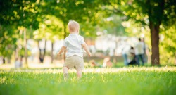 Baby boy back in shorts and white shirt leave park on green grass. Copy space.