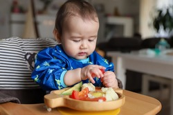 Baby boy eating finger food and mix vegetable plate.Baby led weaning (BLW) self feeding.mixed race Asian-German infant  holding tomato on high chair at home. Cute little child with solid nutrition.