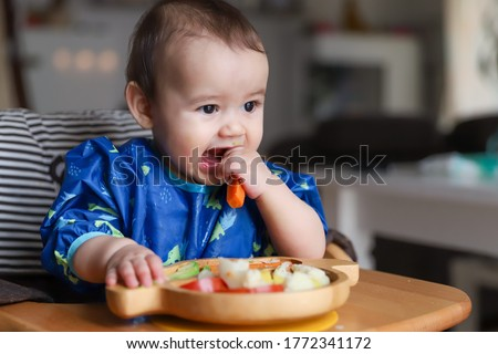Baby boy eating finger food and mix vegetable plate.Baby led weaning (BLW) self feeding.mixed race Asian-German infant biting carrot on high chair at home. Cute little child with solid nutrition.