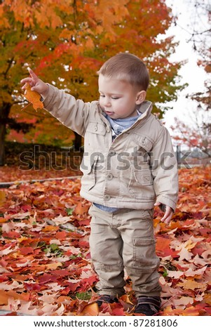 Baby boy playing with leaves in the park