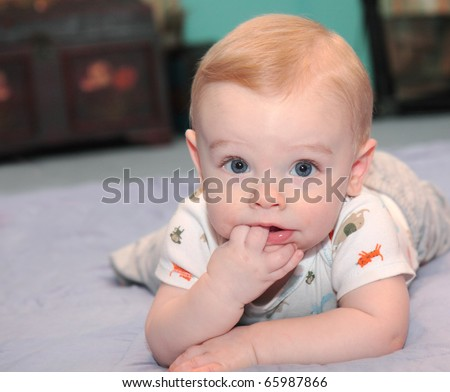 Baby boy with blonde hair and blue eyes learns to crawl,  and plays on floor with fingers in mouth and happy facial expression - stock photo