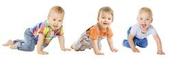 Baby Boys Group, Crawling Infant Kid, Toddler Child Crawl over White background