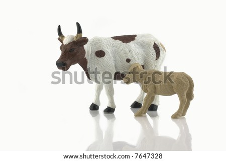 Baby calf and cow toy  isolated on white