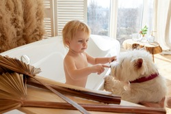 Baby child blonde girl with white westie dog in a bright bathroom with wooden floor window and bath