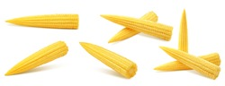baby corn, isolated on white background, clipping path, full depth of field