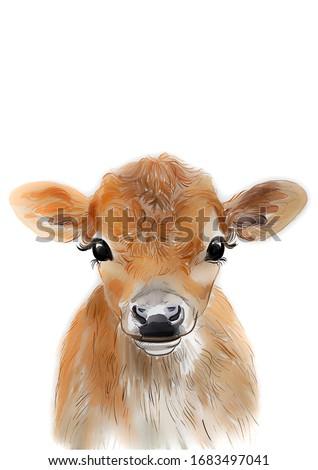 Baby Cow, Cow print, Farm baby animal, Nursery wall art, Printable poster, Kids bedroom decor, Woodland animal print, Printable baby animal art