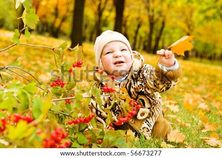 Baby crawling over autumnal yellow leaves carpet