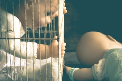 Baby doll toy in cage victim emotionally,abused,kidnapped concept,Vintage filter effects