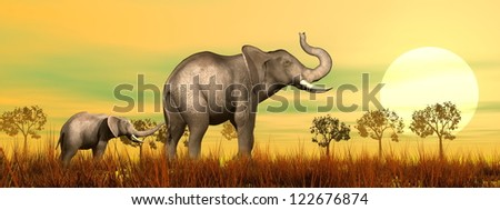 Baby elephant holding mum's queue in the savannah by sunset