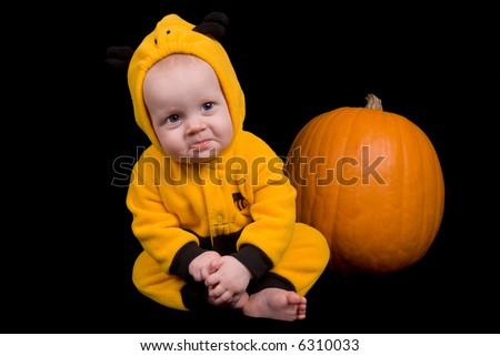 Baby Girl in a bumble bee costume sitting with a pumpkin isolated over a black background
