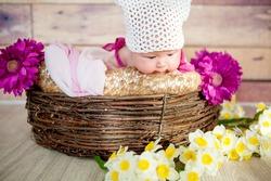 Baby girl in the nest