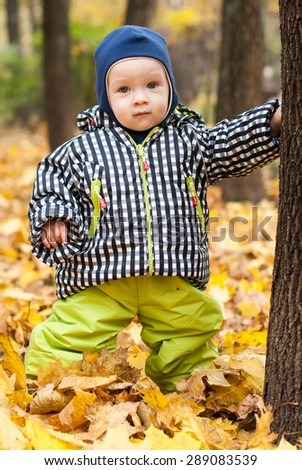Baby in a park. Yellow leafs and baby