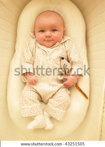 Baby in bassinet with stuffed toy. Vertically framed shot.