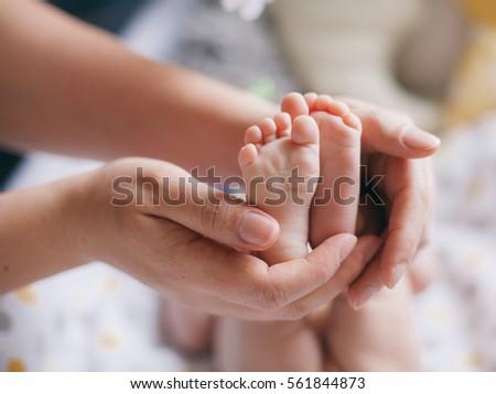 baby's feet in mother's hands #561844873