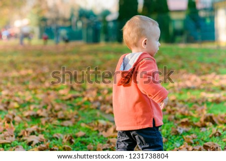 Baby's first steps on the leaves in the park on sunny autumn day