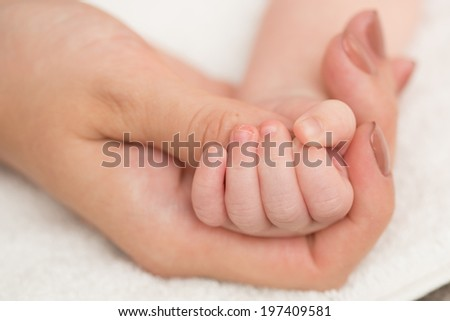 Baby's hand gripping adult finger. Close up