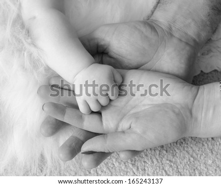 Baby\'s hand held in parents hands. Black and white image