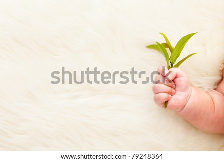 Baby's hand holding young green plant, for a concept of growth itself