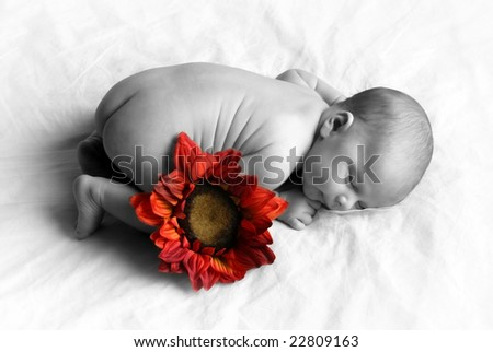 Baby sleeping with a colored flower