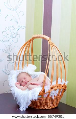 baby sleeps in the basket