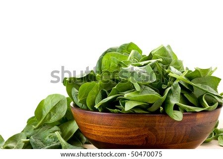 Baby Spinach in a bowl studio isolated on white background