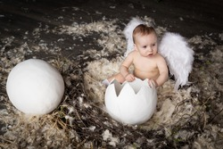 baby with egg, Easter, baby chick